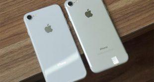 Apple gần như không thay đổi hệ thống camera từ iPhone 7 lên iPhone 8